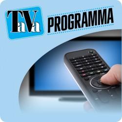 TaVa programma